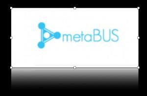 metabus2